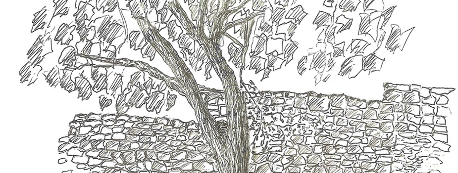 Courtyard in Himara, Pen and Ink